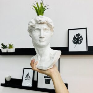 креативная ваза в форме головы Давида